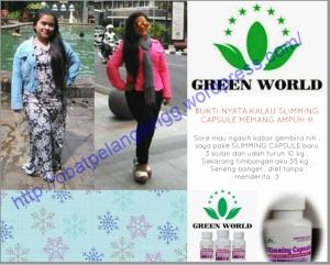 Slimming Capsule Dan Pro Slim Tea Green World Harga Asli Di Agen Resmi